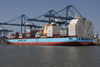 Lars-Maersk--11-July-2013.jpg
